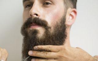 За сколько отрастает борода длиной в 1 см и каковы основные стадии роста бороды. Как правильно ухаживать за ней на каждом из этапов роста