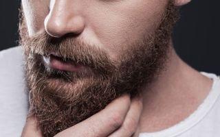 Борода у мужчин: развенчиваем мифы и раскрываем правду о том, как отрастить себе отличную бороду