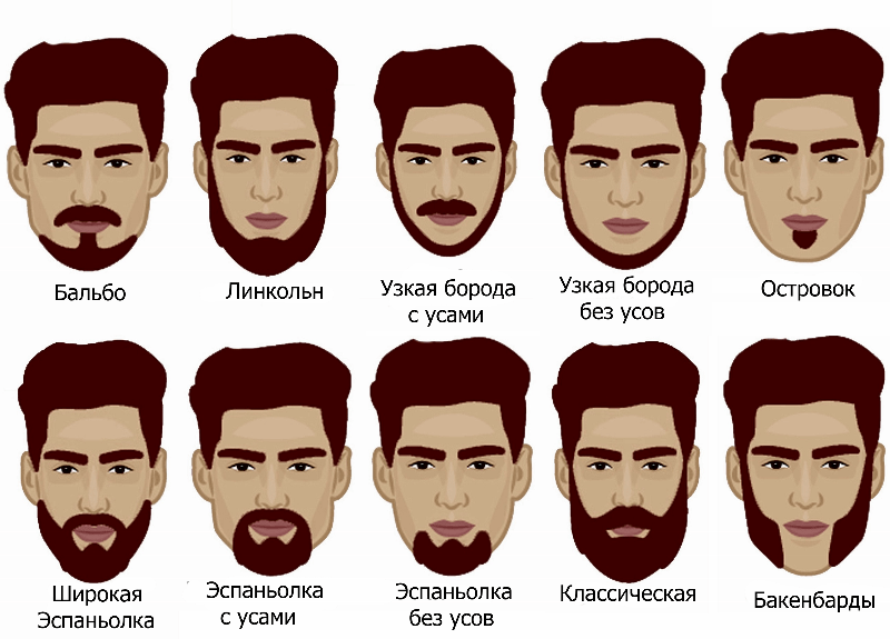 Классификация бороды