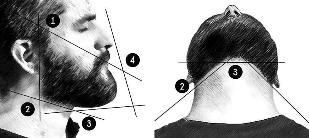 Схема стрижки бороды